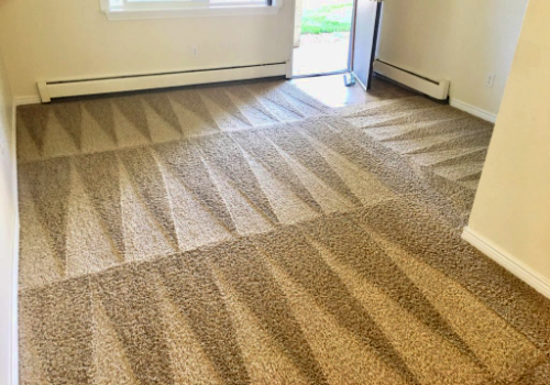 carpet cleaning in Bradenton Florida